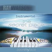 The Secret Place: Seek My Face (Instrumental) by Ray Watson