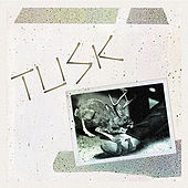 Play & Download Tusk by Camper Van Beethoven | Napster