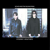 Play & Download Stormy Weather by Echo and the Bunnymen | Napster