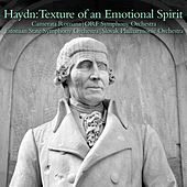Haydn:Texture of an Emotional Spirit by Various Artists