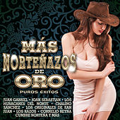 Más Norteñazos de Oro by Various Artists