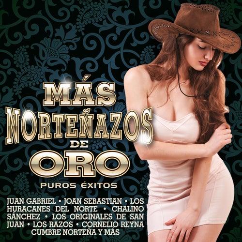 Más Norteñazos de Oro by Various Artists