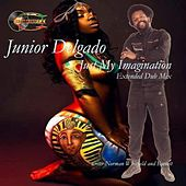 Play & Download Just My Imagination (Extended Dub Mix) by Junior Delgado | Napster
