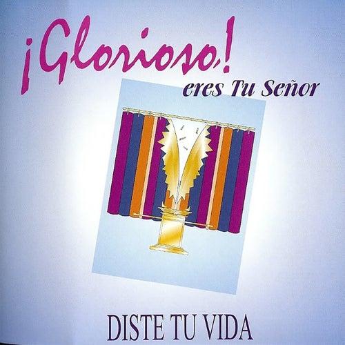 Glorioso Eres Tu Señor by Palabra En Acción