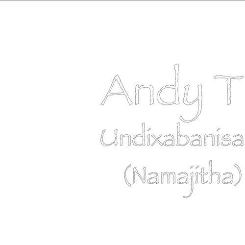 Undixabanisa (Namajitha) by Andy T