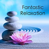 Play & Download Fantastic Relaxation by Zen Music Garden | Napster