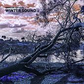 Play & Download Winter Sound by Various Artists | Napster