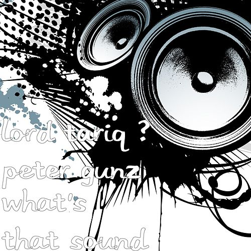 Play & Download What's That Sound by Lord Tariq and Peter Gunz | Napster