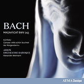 Bach: Magnificat in D Major, BWV 243 - Kuhnau: Wie schön leuchtet der Morgenstern by Various Artists