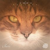 Play & Download Ecstasy by Coyu | Napster