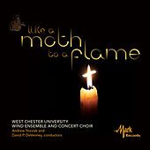 Play & Download Like a Moth to a Flame by Various Artists | Napster