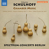 Schulhoff: Chamber Music by Various Artists