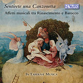 Play & Download Sentirete una canzonetta by In Tabernae Musica | Napster