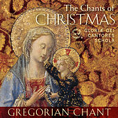 Play & Download The Chants of Christmas by Gloriæ Dei Cantores | Napster