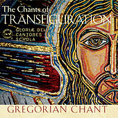 Play & Download Shining Like the Sun (The Chants of Transfiguration) by Various Artists | Napster