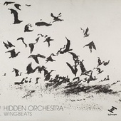 Wingbeats by Hidden Orchestra