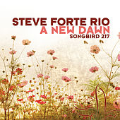 Play & Download A New Dawn by Steve Forte Rio | Napster