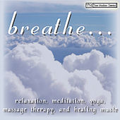Relaxation, Meditation, Yoga, Massage Therapy and Healing Music by Various Artists