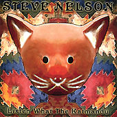 Listen What the Katmandu by Steve Nelson