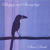 Play & Download Bluejays and Sunnydays by Steve Smith | Napster