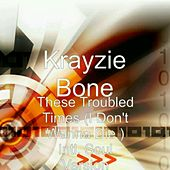 These Troubled Times  (I Don't Wanna Die) [Intl. Soul Version] [feat. Ne-Yo & Ahmed Soultan] - Single by Krayzie Bone