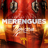 Merengues Típicos, Vol. 1 by Various Artists