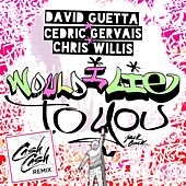 Would I Lie To You (Cash Cash Remix) von David Guetta