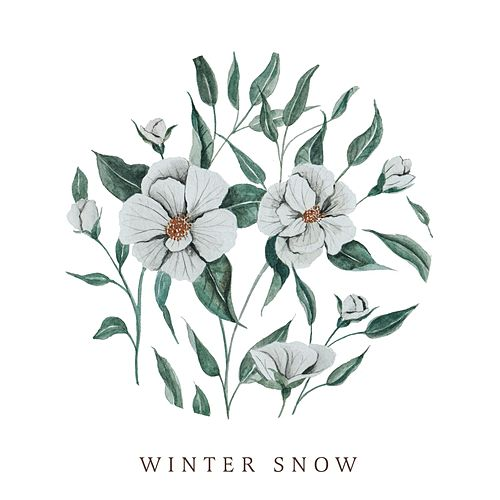 Play & Download Winter Snow by Audrey Assad | Napster