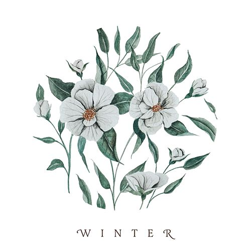 Play & Download Winter by Audrey Assad | Napster
