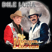 Play & Download Dile Luna by Miguel Y Miguel | Napster
