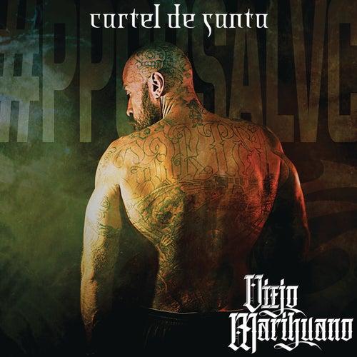 Viejo Marihuano by Cartel De Santa