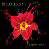 Play & Download Efflorescent: Echoes Live 22 by Various Artists | Napster