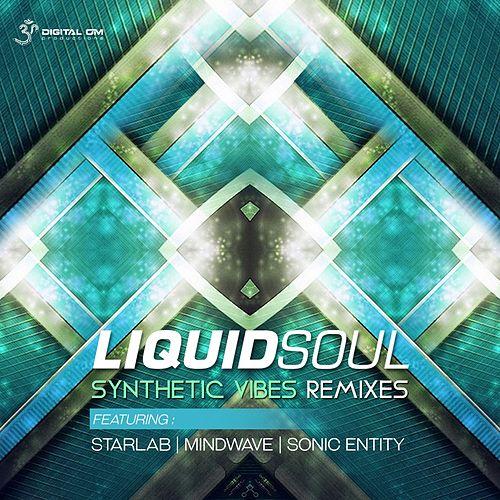 Play & Download Synthetic Vibes Remixes by Liquid Soul | Napster