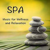 Play & Download SPA Music for Wellness and Relaxation by Massage Therapy Music | Napster