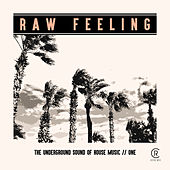 Raw Feeling - The Underground Sound of House Music, Vol. 1 by Various Artists
