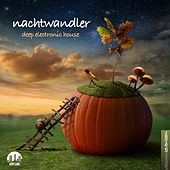 Nachtwandler, Vol. 17 - Deep Electronic House by Various Artists