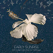 Play & Download Early Sunrise by Various Artists | Napster