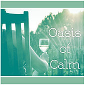 Oasis of Calm – Music for Relaxation, Healing Sleep Music, Deep Rest, Classical Collection for Listening by Relaxation Therapy Music Universe
