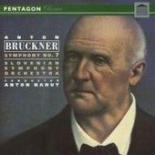 Bruckner: Symphony No. 7 by Slovenian Symphony Orchestra