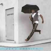 Gravity Room by Zero Gravity