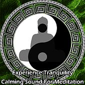 Experience Tranquility: Calming Sound For Meditation by Various Artists