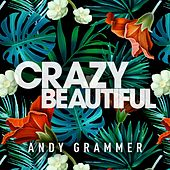 Play & Download Crazy Beautiful EP by Andy Grammer | Napster