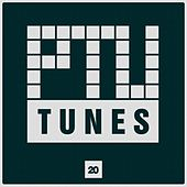 Ptu Tunes, Vol. 20 by Various Artists