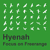 Focus On Freerange:  Hyenah by Hyenah