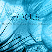 Focus: Music for Concentration, Study & Relaxation by Various Artists