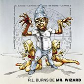 Mr. Wizard by R.L. Burnside