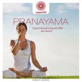 entspanntSEIN - Pranayama von Davy Jones