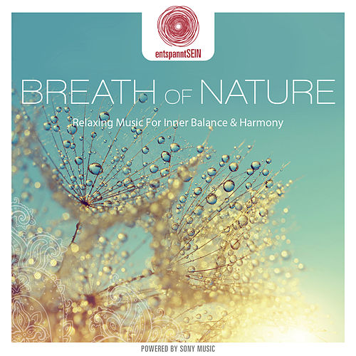 entspanntSEIN - Breath of Nature (Relaxing Music for Inner Balance & Harmony) by Davy Jones