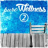 Pure Wellness 2 by Various Artists
