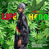 Play & Download Life Herb (feat. Satnam Singh Chatha & Bhingy Riddim) by I Wayne | Napster